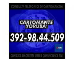 Ⓒⓐⓡⓣⓞⓜⓐⓝⓣⓔ Ⓨⓞⓡⓤⓑⓐ' Consulti telefonici
